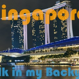 Walking in my Backyard – Singapore (2019)